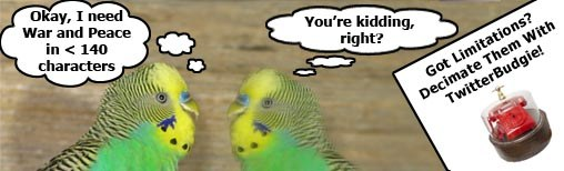 What is TwitterBudgie?